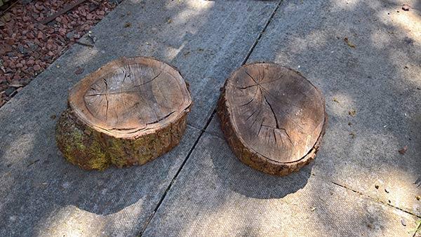 log slices for homemade garden stool