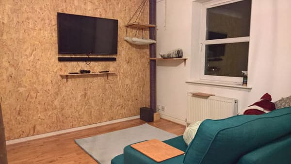 osb feature wall idea for living room