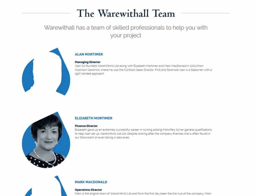 team profiles design for brochure website